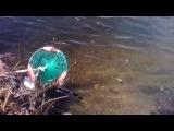 По местам рыболовной славы группы